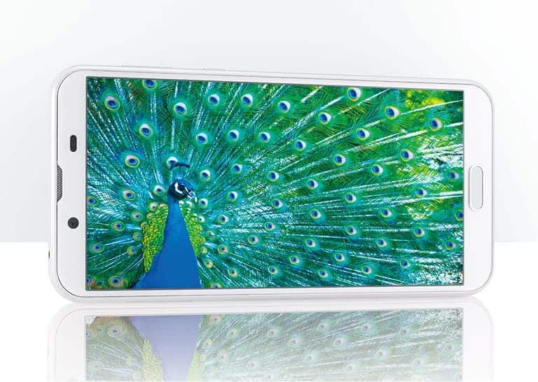 5.5 吋 2160x1080 屏幕 on Sharp SHV43